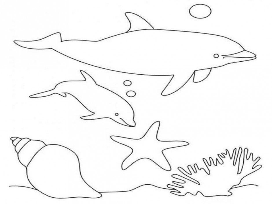 Dolphin Coloring Pages Cute Dolphin Baby Dolphin Coloring Pages
