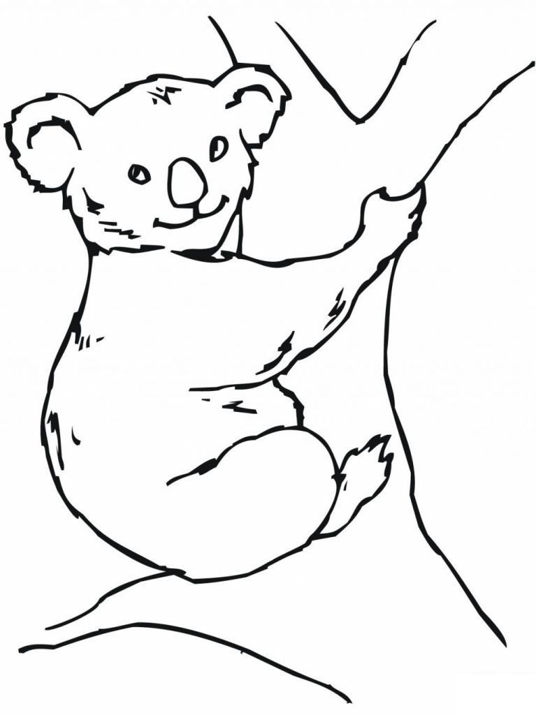 Coloring Pages Aboriginal Animals : Aboriginal animal list colouring pages page az