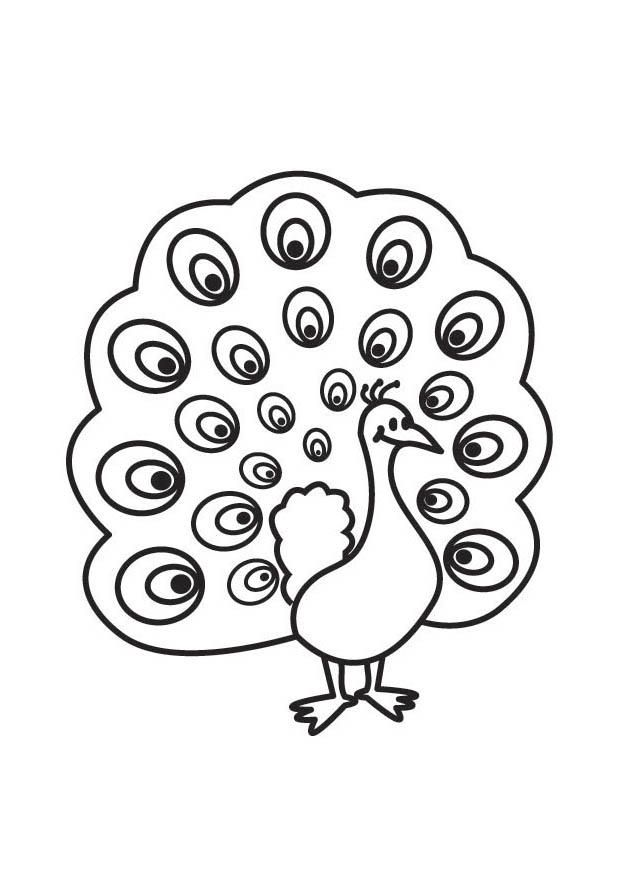 Coloring page Peacock - img 17763.