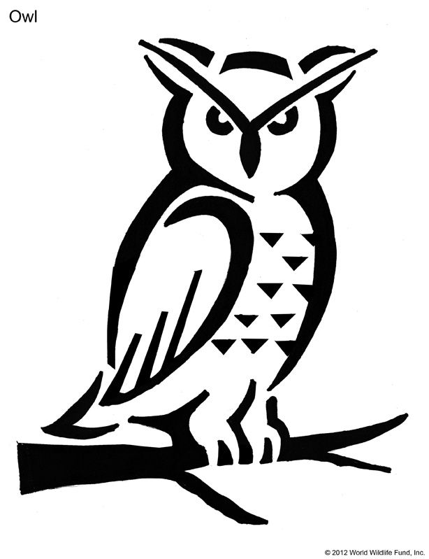 photo relating to Printable Owl Stencils named Owl Stencil Printable - Coloring Household