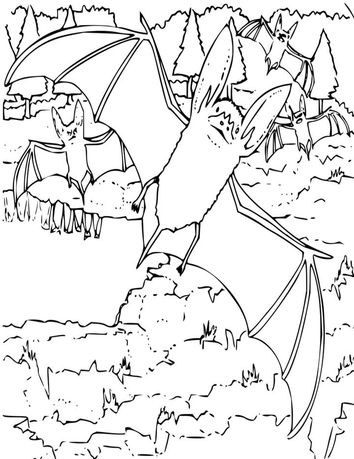 Bat color pages coloring home for Printable bat coloring pages
