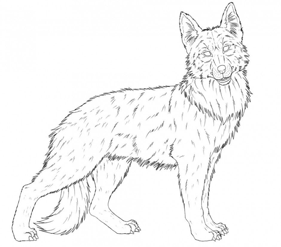 German shepherd coloring online super coloring 258575 for German shepherd coloring pages printable
