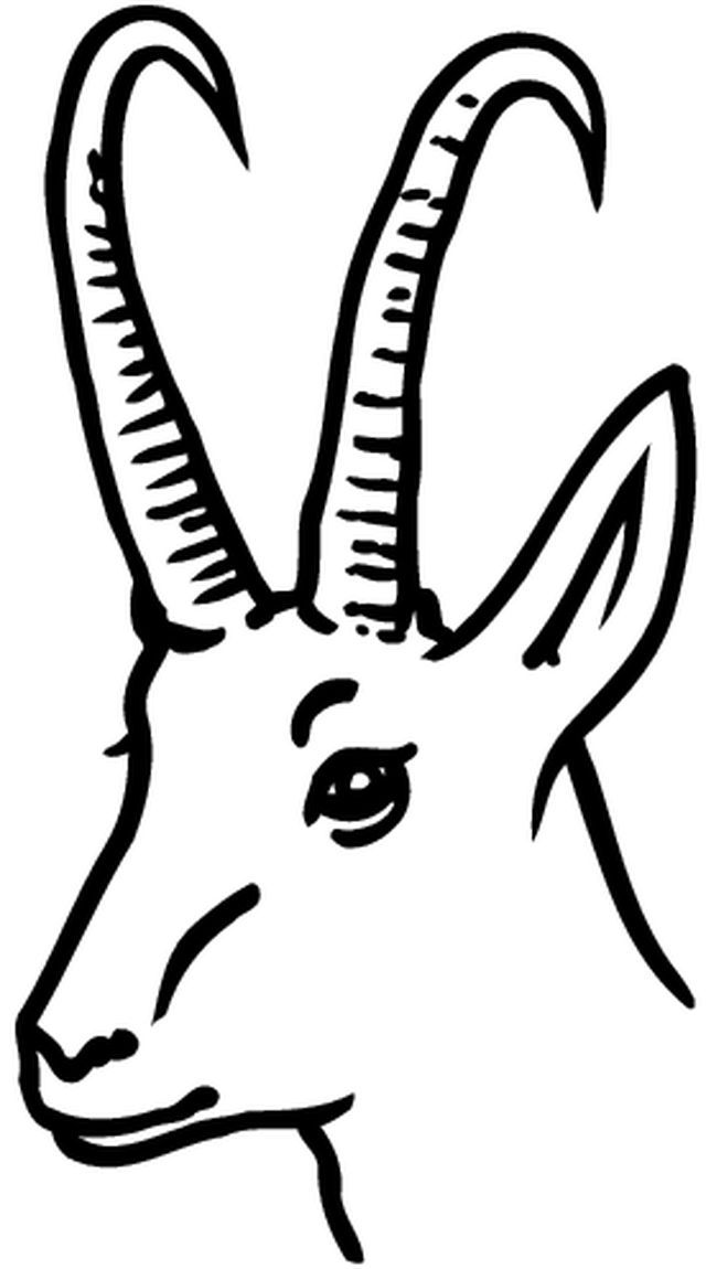 gazelle coloring pages for kids - photo#30