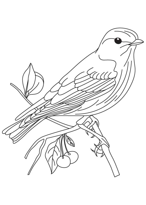 coloring pages goldfinch - photo#25