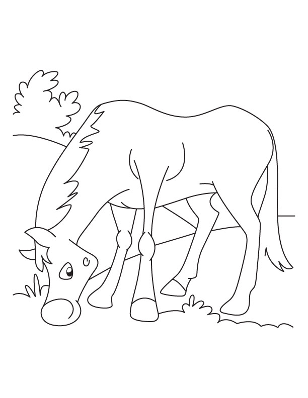 grazing horse coloring pages download free grazing horse