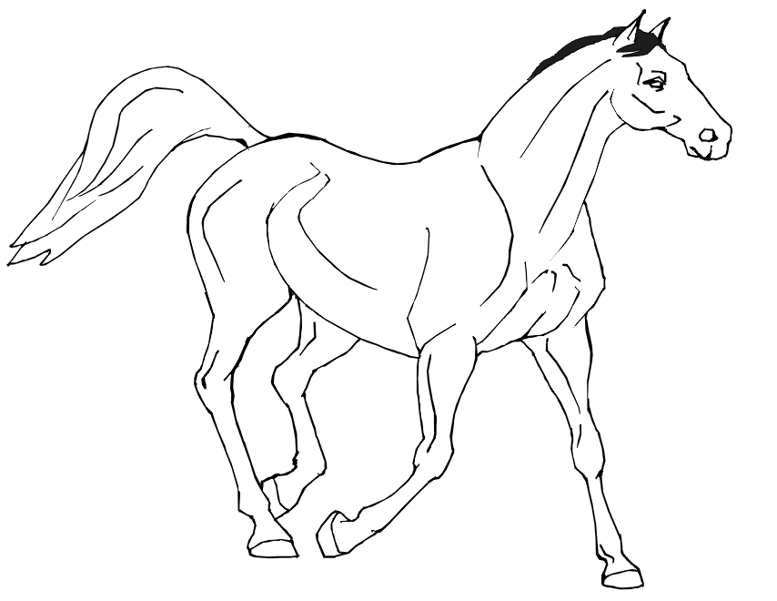 realistic horse coloring pages online - photo#32