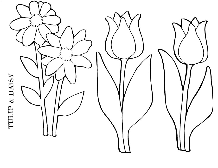 free printable daisy coloring pages - photo#25
