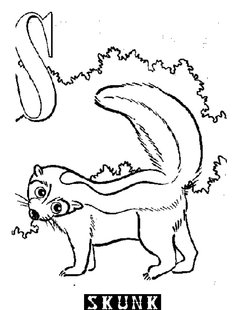 Beanie boo alpine free colouring pages for Coloring page of a skunk