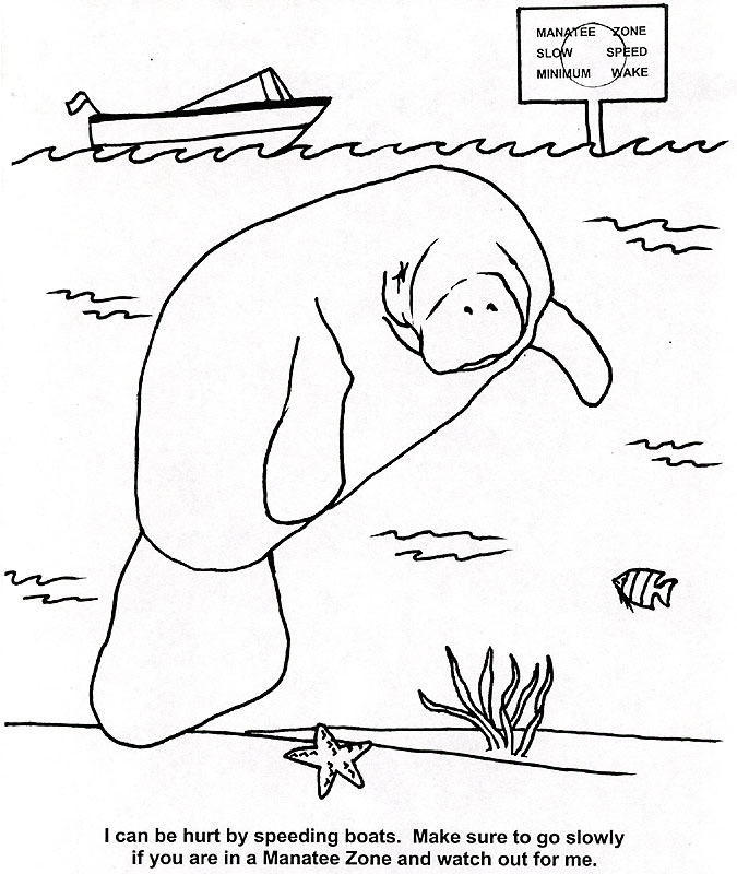 manatee free coloring pages - photo#21