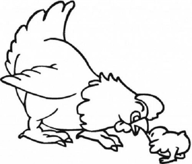 Coloring Pages Of Animals And Their Babies Kids Colouring Pages