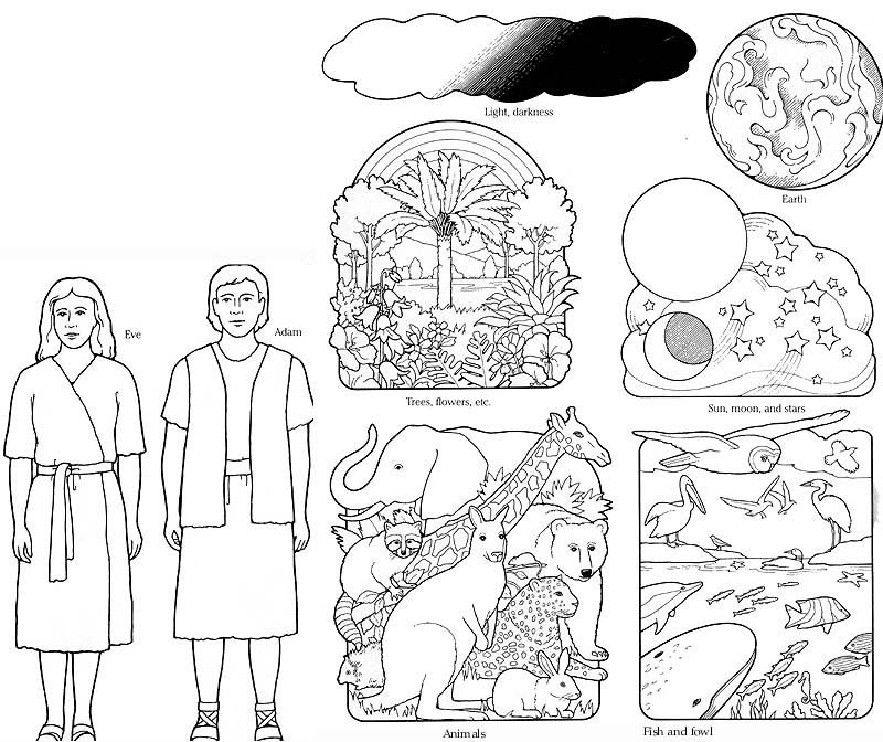 creation story coloring pages | Coloring Pages On The Story Of Creation - Coloring Home