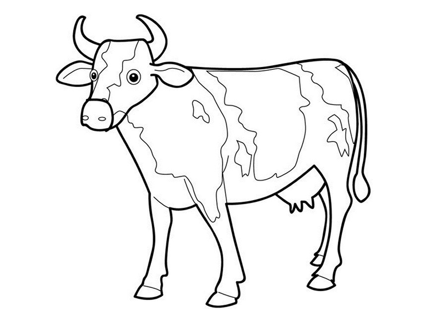 Cow Drawing Outline Co...