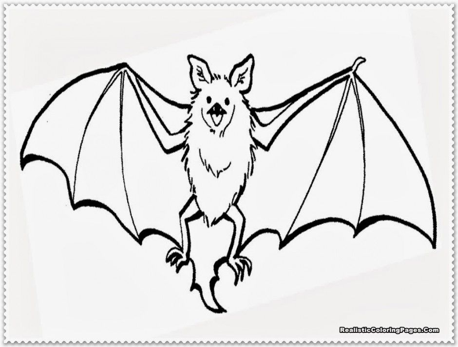 Bat template for kids coloring home for Printable bat coloring pages