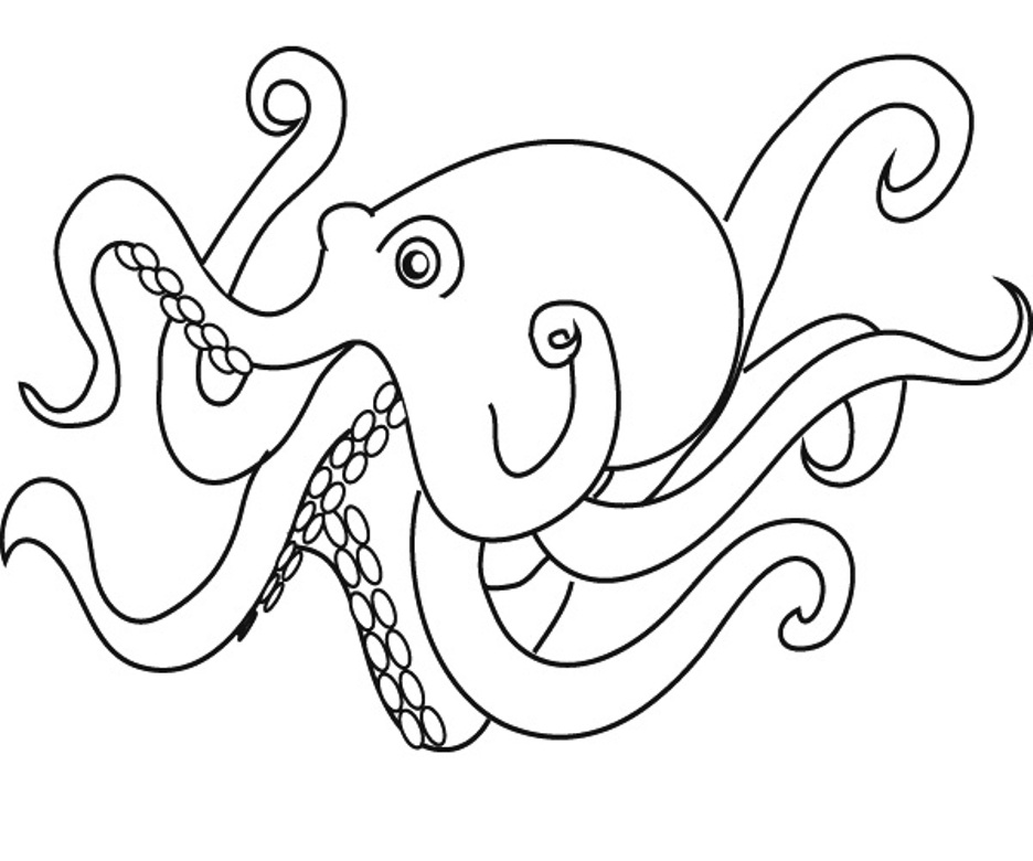 O Octopus Coloring Page Download Animal Octopu...