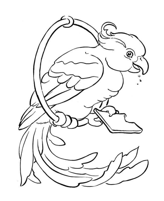 parrot coloring pages bird - photo#17
