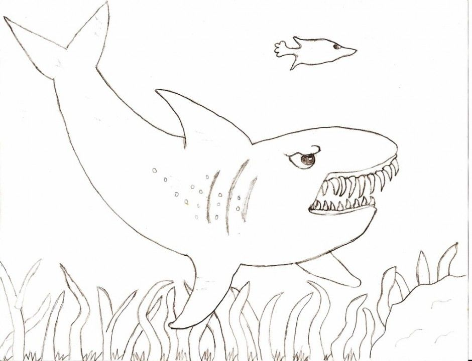 Great White Shark Coloring Page - Coloring Home