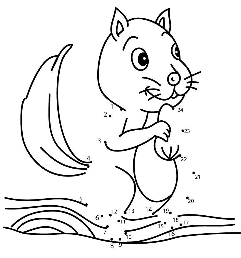 little squirrel animal dot to dot dimagiz dots to dots image