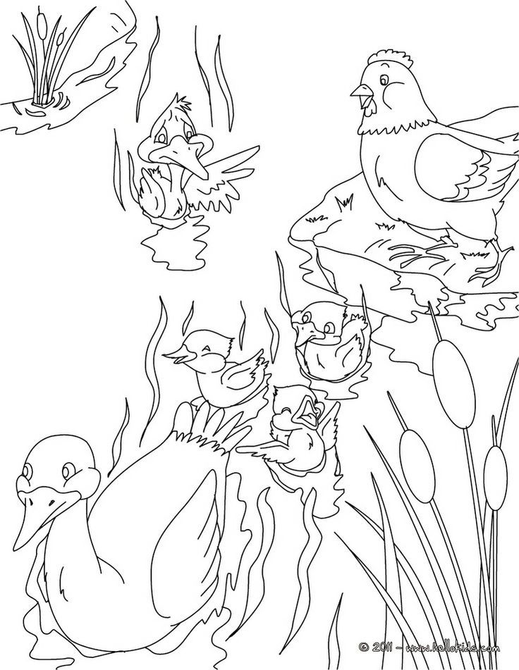 duckling and coloring pages - photo#28