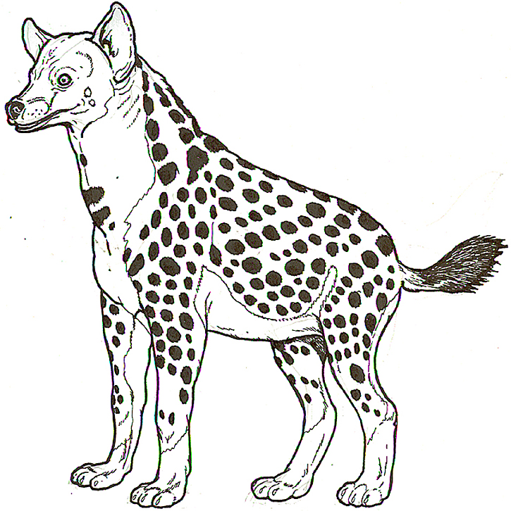 hyena coloring pages - picture of a hyena az coloring pages