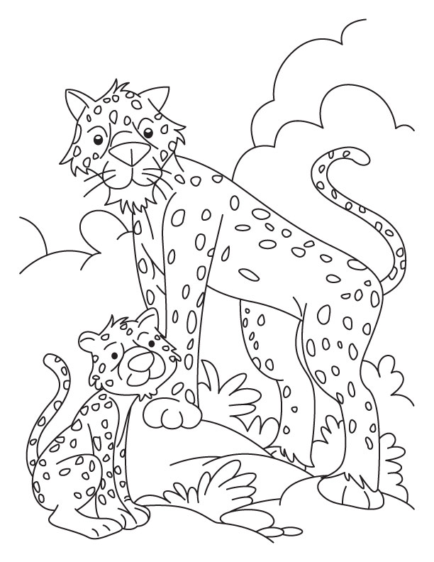 Realistic Cheetah Coloring Pages Cheetah And Cub Coloring Pages