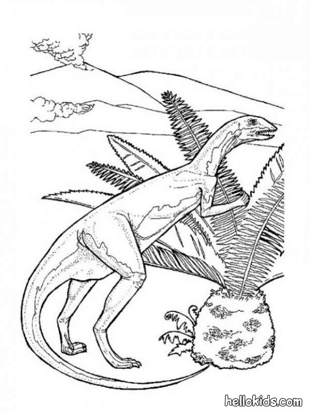 Coloring Pages Of Prehistoric Animals : Allosaurus coloring pages home