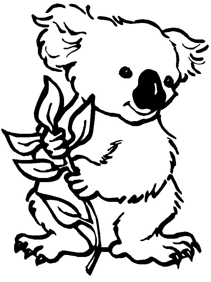 online koala coloring pages - photo#5
