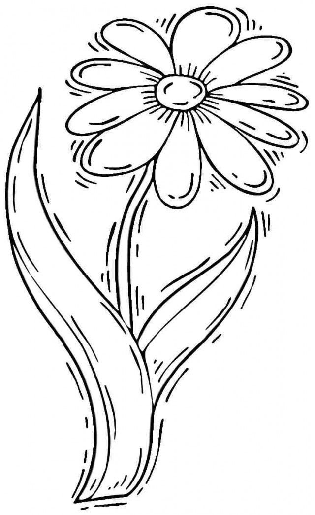 Daisy Flower Coloring Pages - Coloring Home