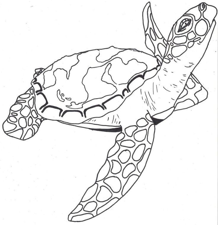 artsy coloring pages - pin by jessica scarborough on trying to be artsy