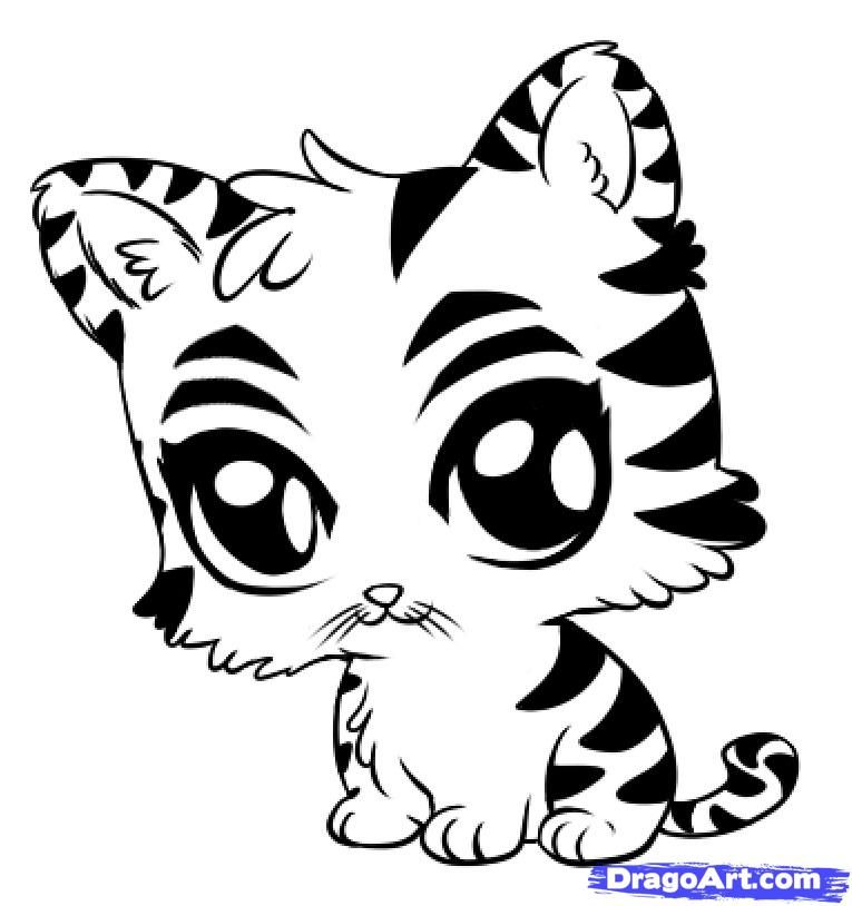 cute tiger drawing coloring pages tiger