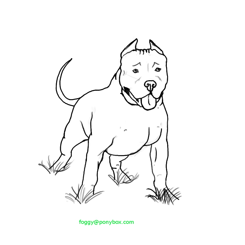 pit bulls coloring pages - photo#21