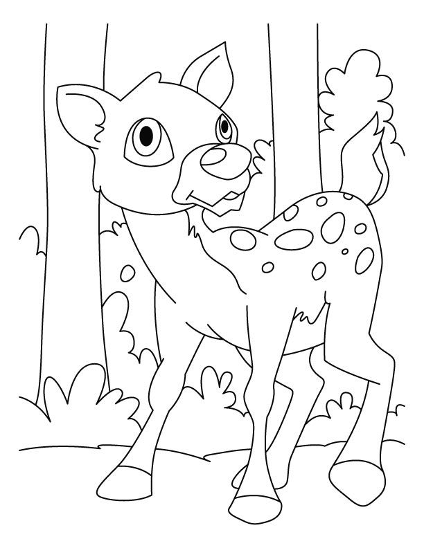 Deer Coloring Page Deer Coloring Pages 2 Deer Coloring Pages 2