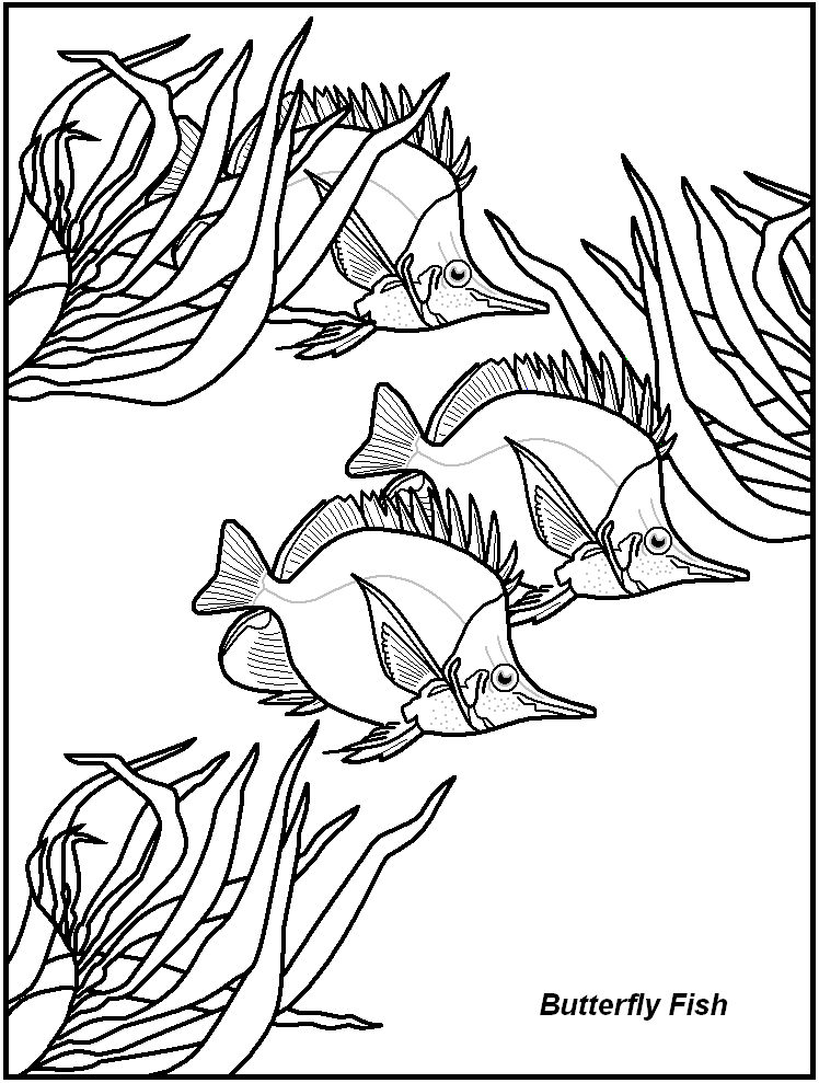 Aquarium decor pages coloring pages for Decor 6 template