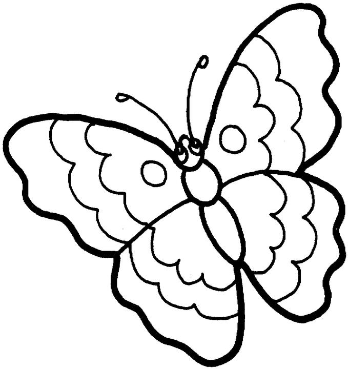 A To Z Kids Stuff | Butterfly Color Page - Coloring Home