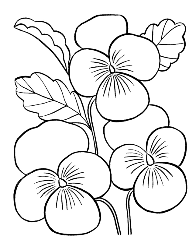 flower coloring pages for adults az coloring pages