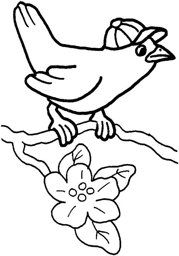 Cute Bird Coloring Page for Kids - Free Printable Picture