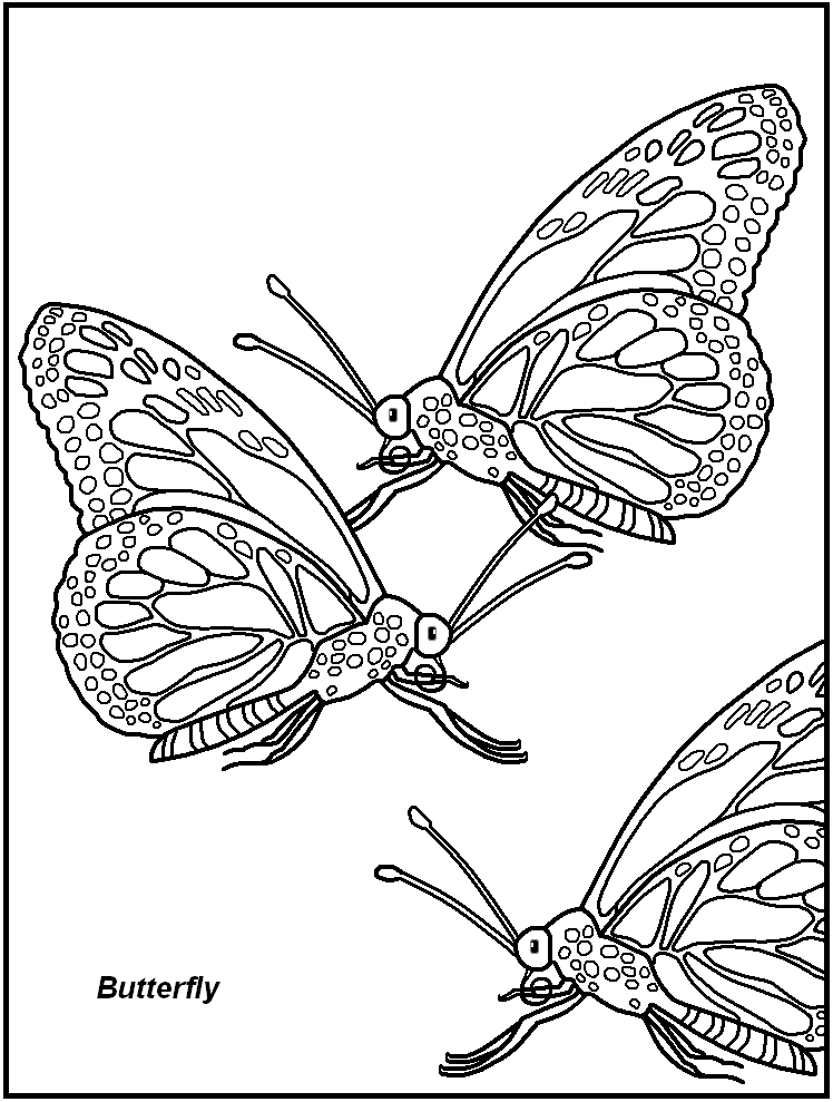 Insect images for kids coloring home for Free bug coloring pages