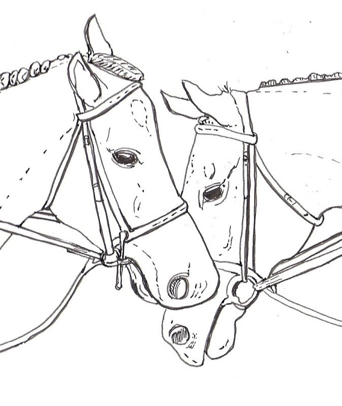 Horse Coloring Pages | Top Coloring Pages