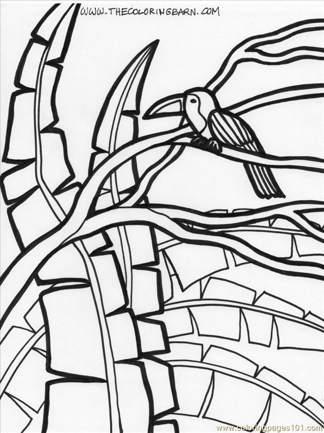 Coloring Pages Plants And Animals : Rainforest plants coloring pages home
