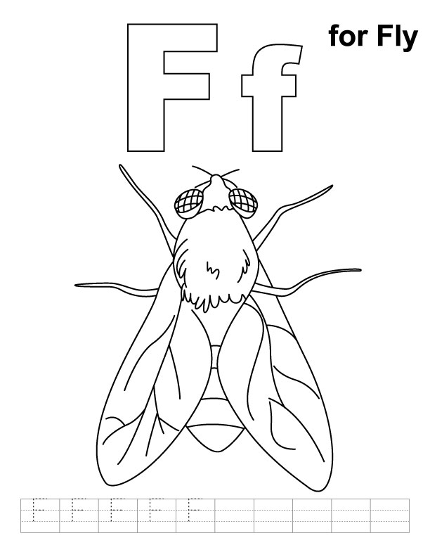 Fly Coloring Pages Az Coloring Pages Fly Coloring Page