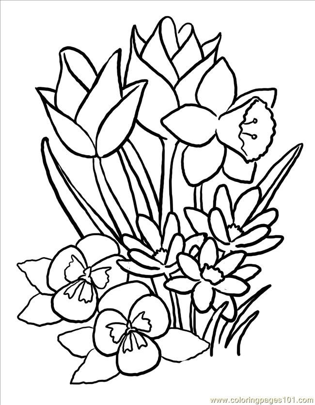 Spring Flowers To Color And Print  Coloring Home