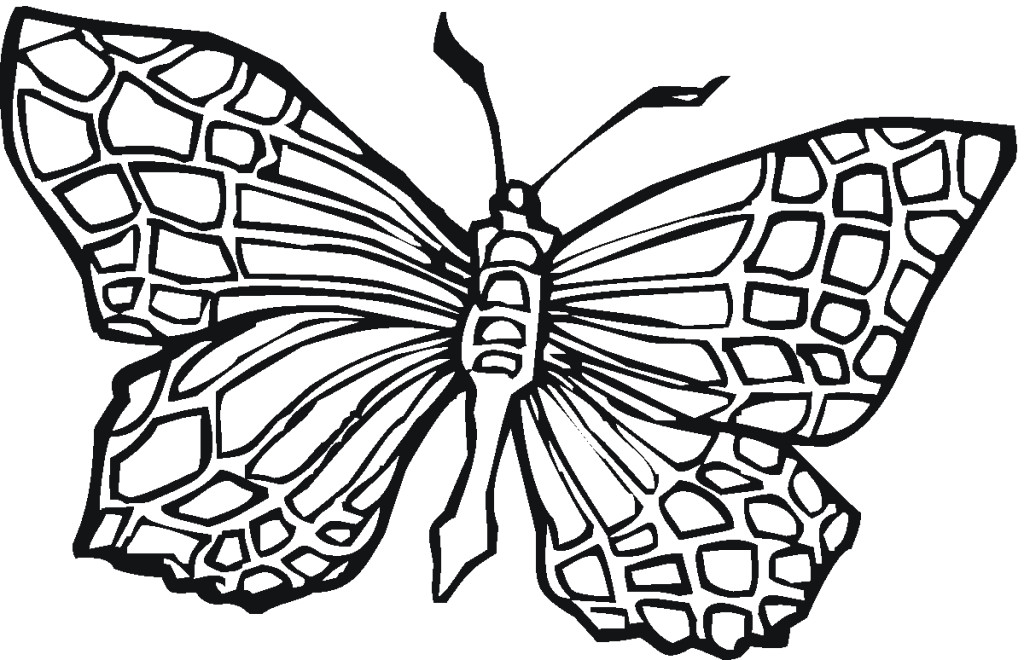 Advanced Butterfly Coloring Pages : Advanced coloring pages az