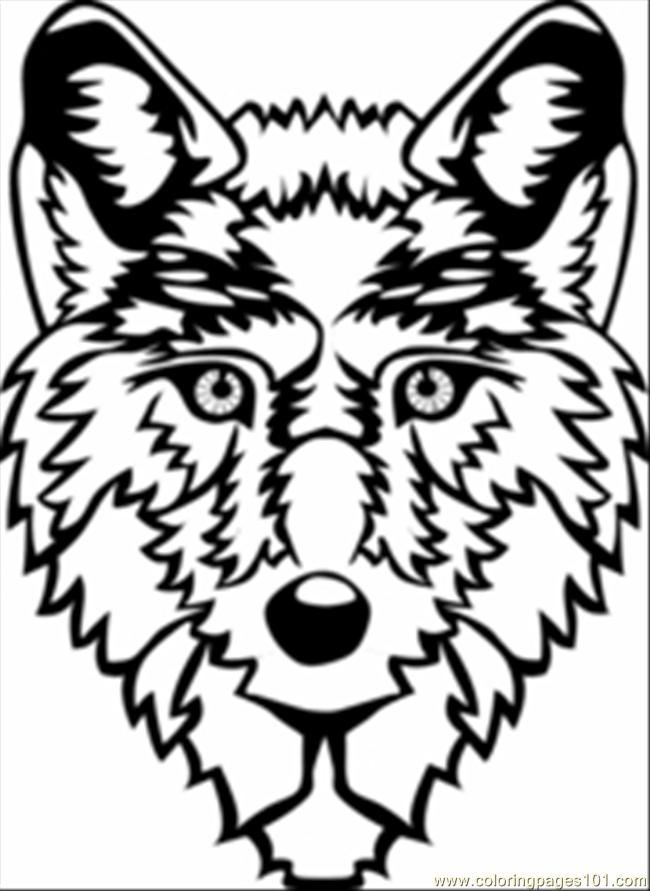 Wolf Printable  Coloring Home