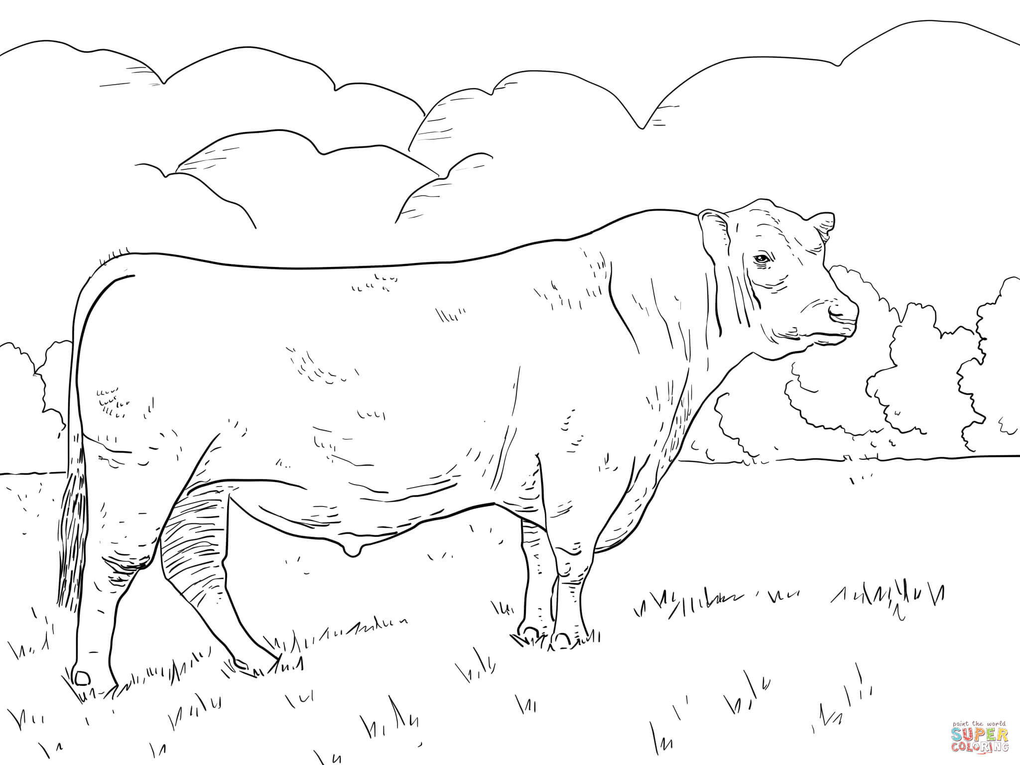 Bull Coloring Pages Girls - Coloring Pages For All Ages