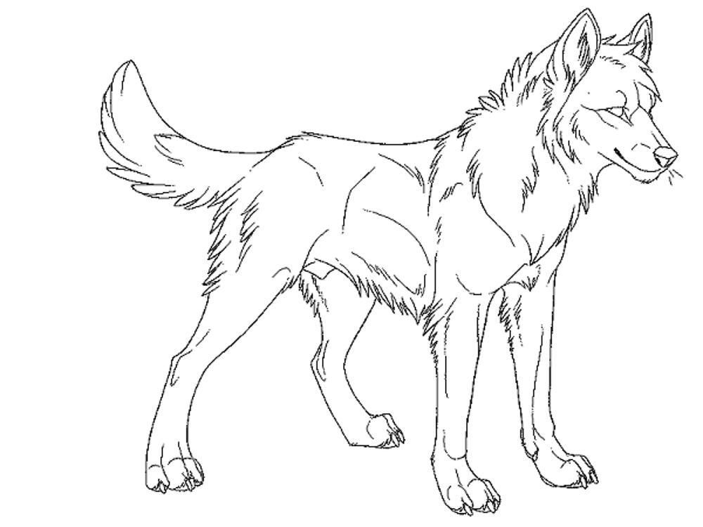 Realistic Wolf Coloring Pages To Print - Coloring Home