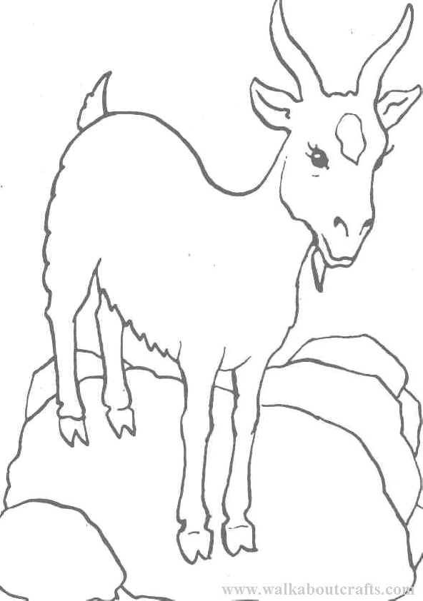 Coloring Pages Goat AZ Coloring