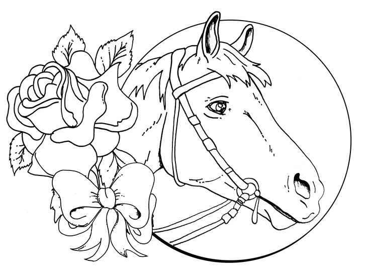 Horse Face Coloring Page - AZ Coloring Pages