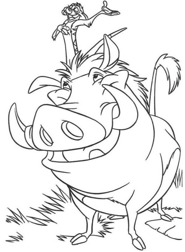 Pig Coloring Pages Timon Pumbaa And Zazu The Lion King