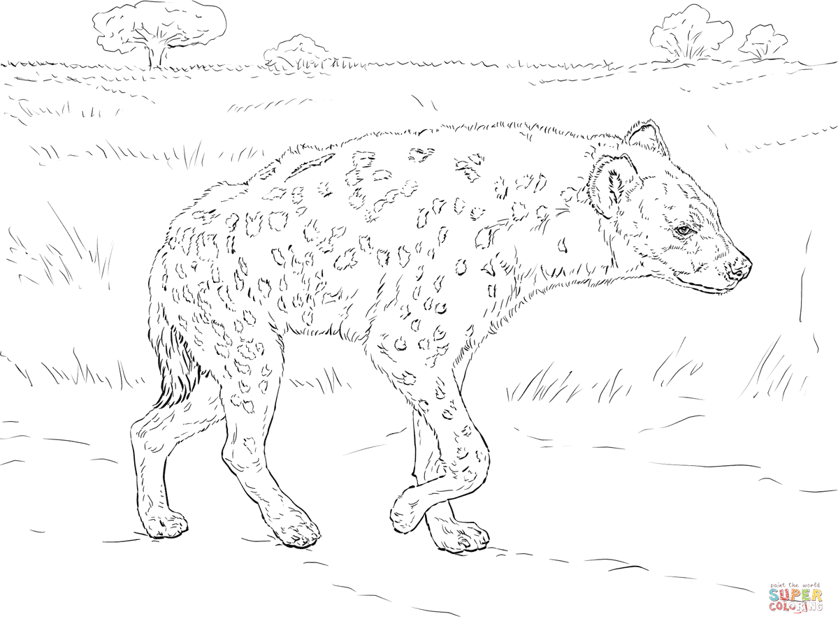 Spotted Hyena Walking In The Savannah coloring page | Free ...
