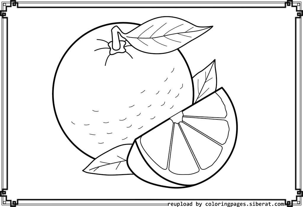 coloring pages orange - photo#21
