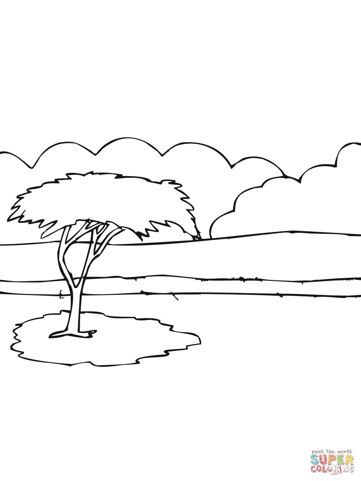 Desenhar Planta Online African Acacia Tree Coloring Page Free Printable